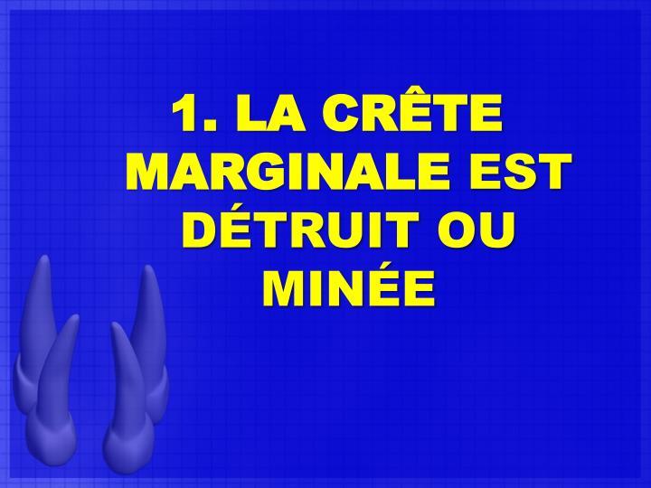1. LA CRÊTE MARGINALE