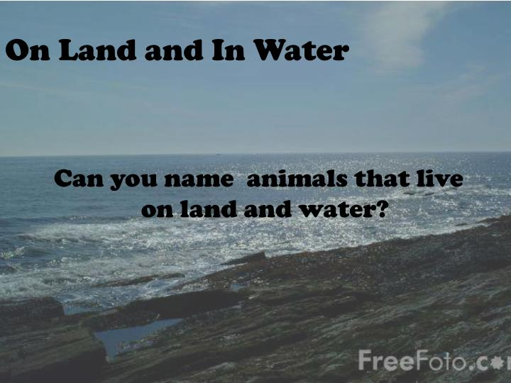 On Land and In Water