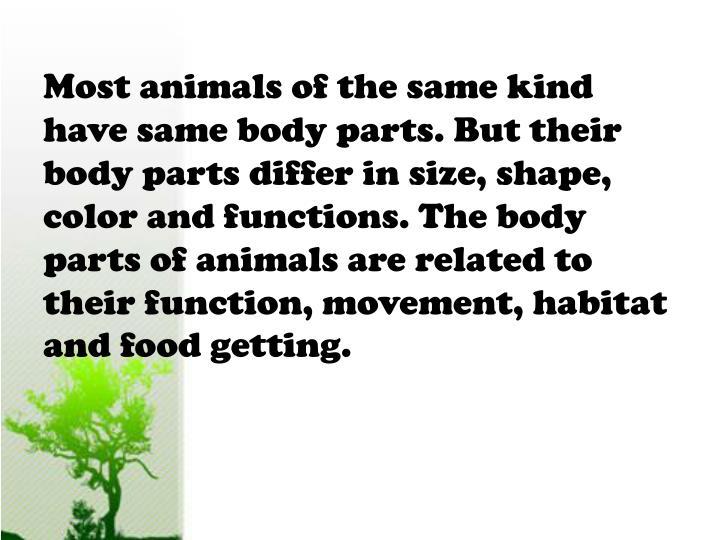 Most animals