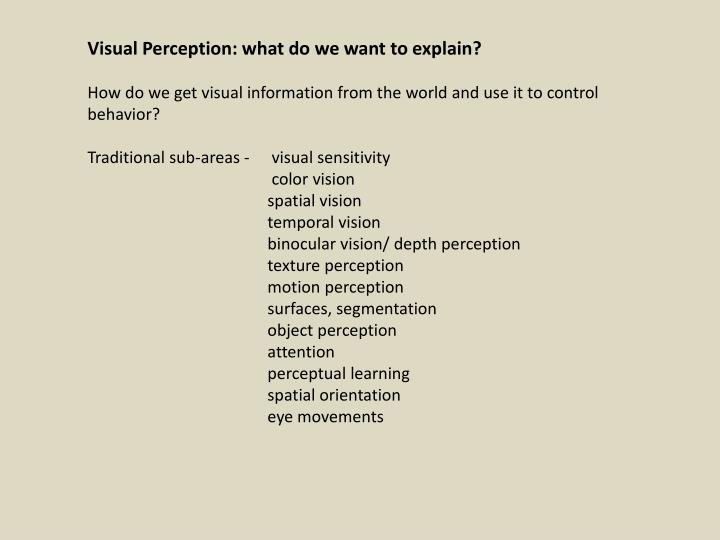 Visual Perception: what do we want to explain?