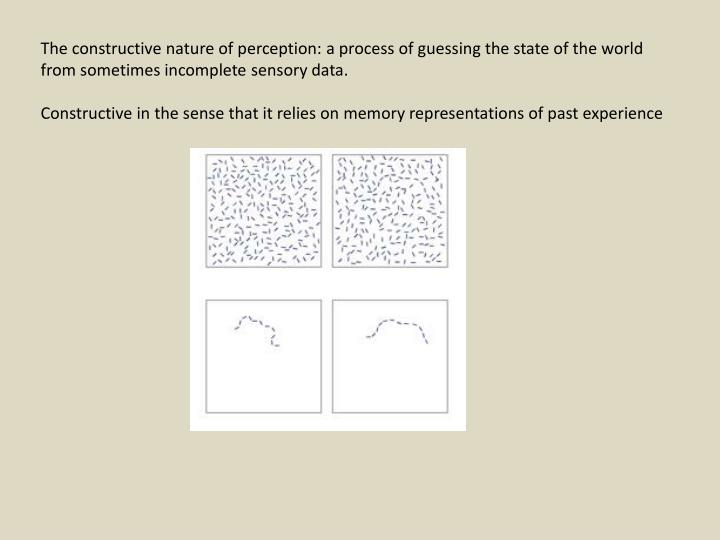 The constructive nature of perception: a process of guessing the state of the world