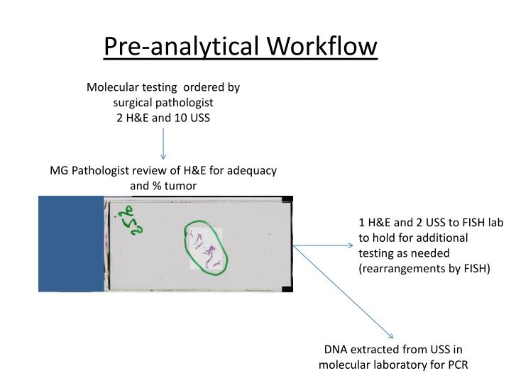 Pre-analytical Workflow