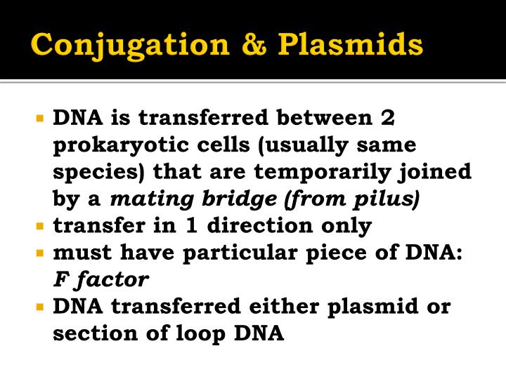Conjugation & Plasmids
