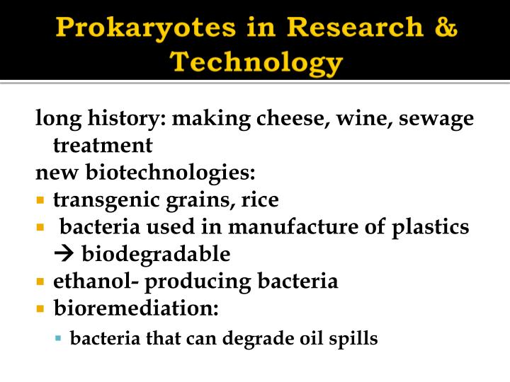 Prokaryotes in Research & Technology