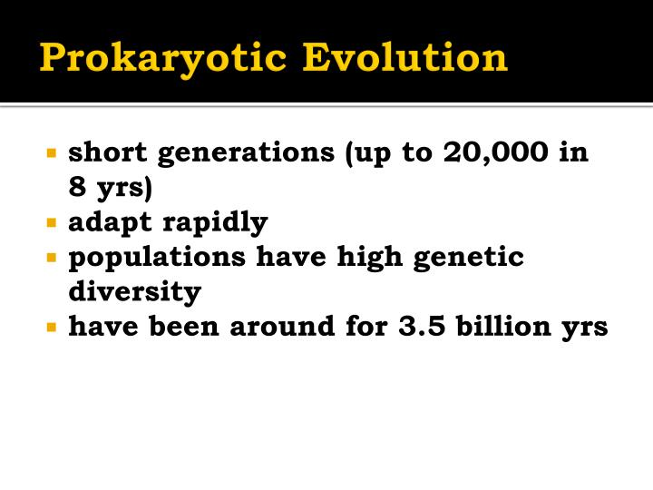 Prokaryotic Evolution