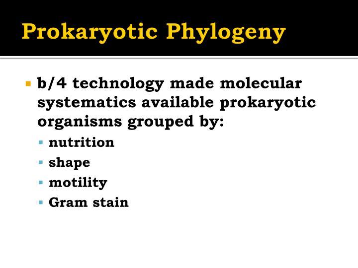 Prokaryotic Phylogeny