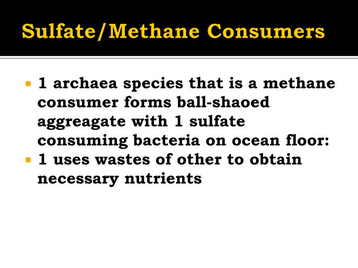 Sulfate/Methane Consumers