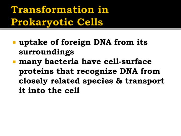 Transformation in Prokaryotic Cells