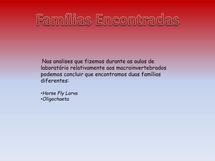 Famílias Encontradas