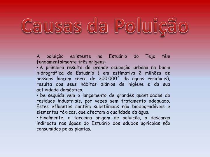 Causas da Poluição