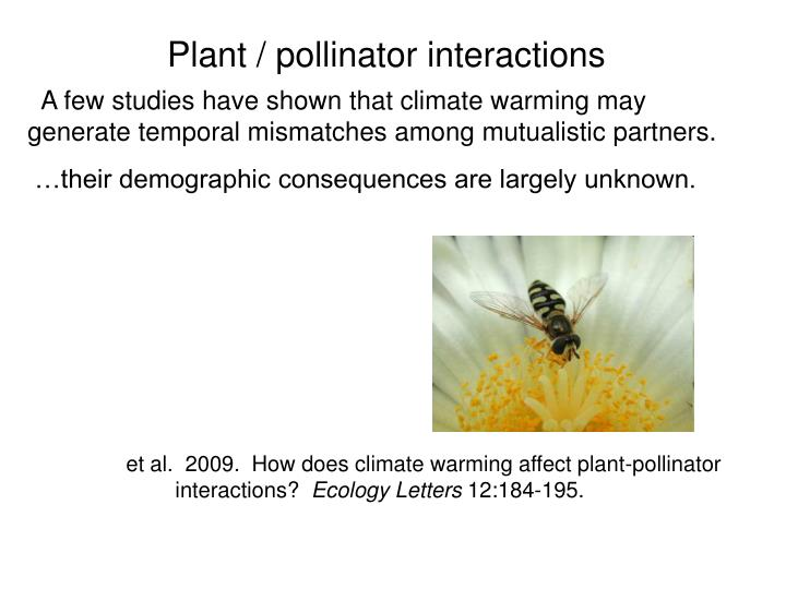 Plant / pollinator interactions
