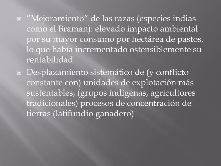 """""""Mejoramiento"""" de las razas (especies indias como el Braman): elevado impacto ambiental por su mayor consumo por hectárea de pastos, lo que había incrementado ostensiblemente su rentabilidad"""