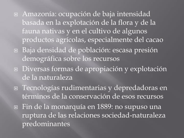 Amazonía: ocupación de