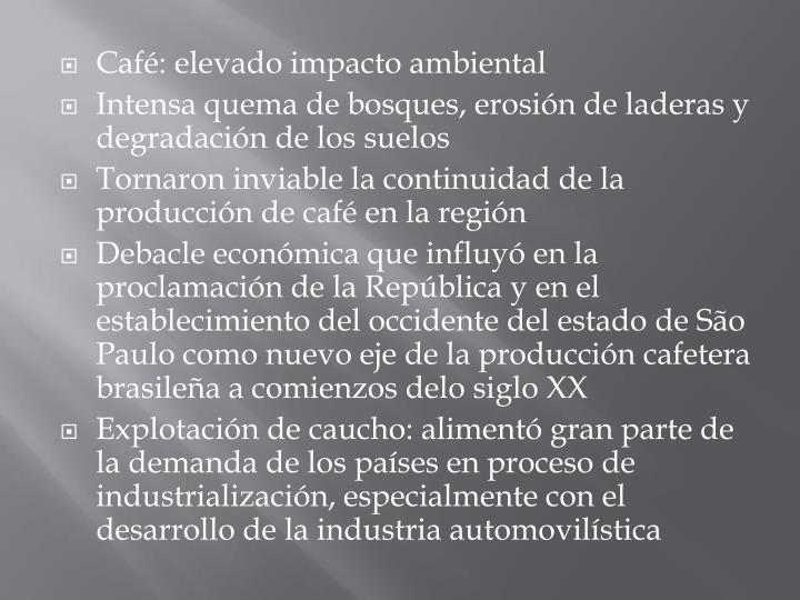 Café: elevado impacto ambiental