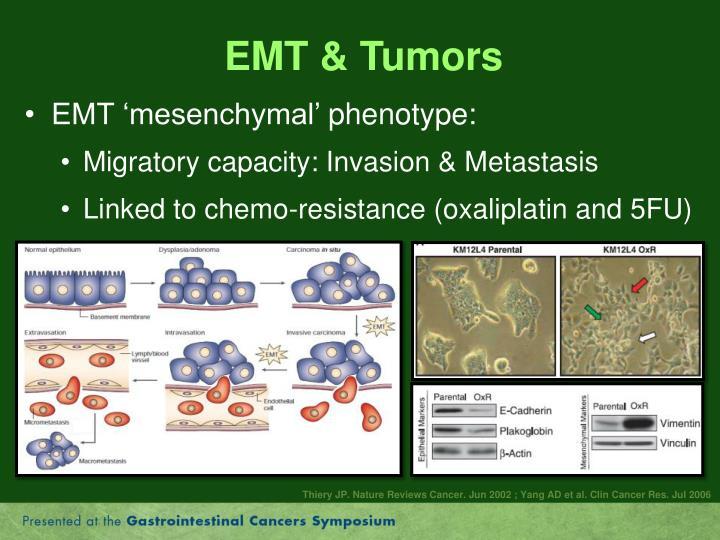 EMT & Tumors