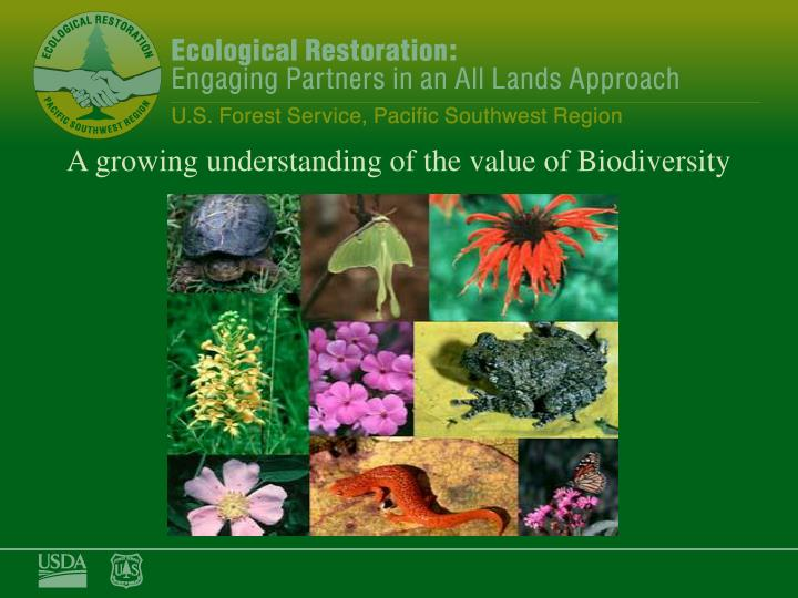 A growing understanding of the value of Biodiversity