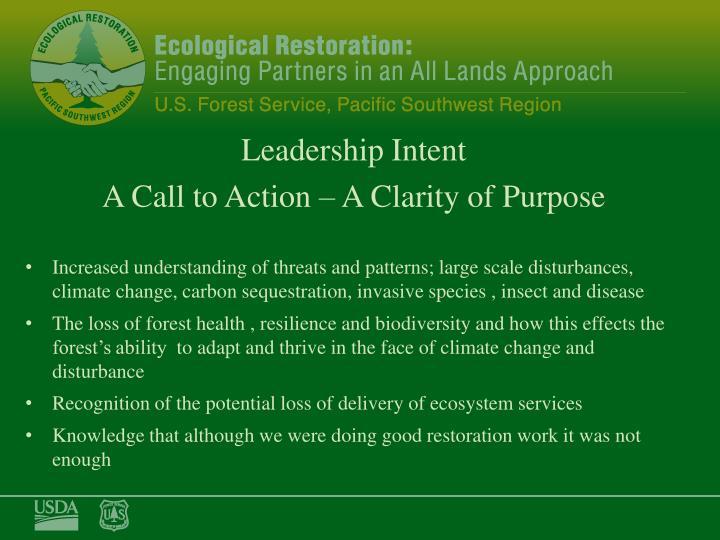 Leadership Intent