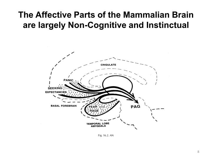 The Affective Parts of the Mammalian Brain are largely Non-Cognitive and Instinctual