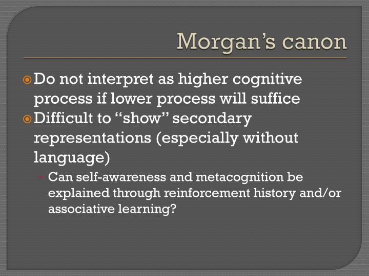 Morgan's canon