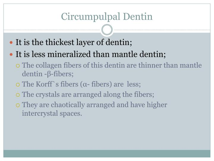 Circumpulpal Dentin