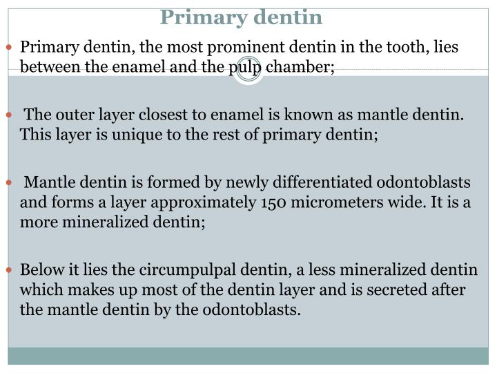 Primary dentin
