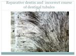 reparative dentin an d incorrect course of dentinal tubules