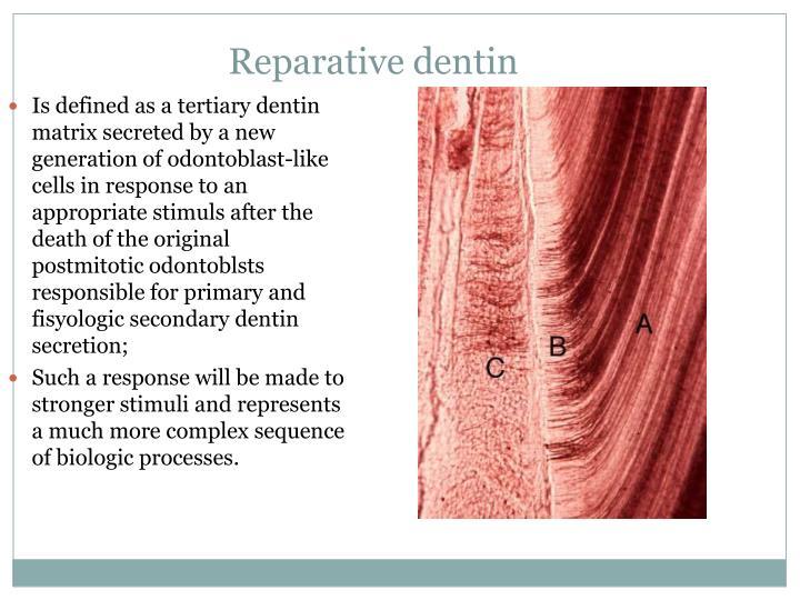 Reparative