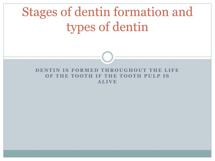 Stages of dentin formation and types of dentin