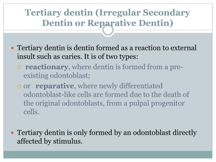 Tertiary dentin (Irregular Secondary Dentin or Reparative Dentin)