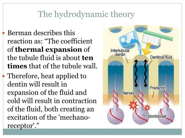 The hydrodynamic theory