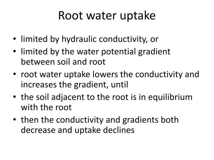 Root water uptake