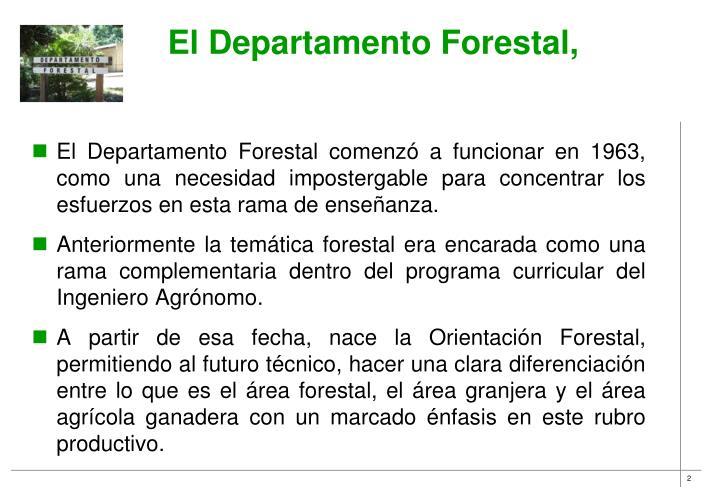 El Departamento Forestal,
