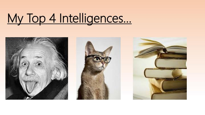 My top 4 intelligences