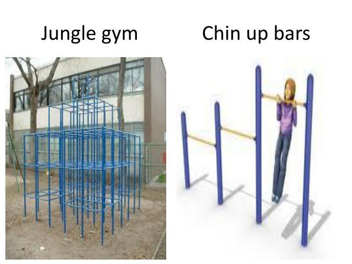 Jungle gym             Chin up bars