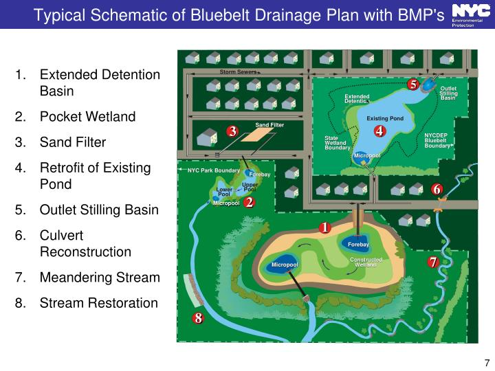 Typical Schematic of Bluebelt Drainage Plan with BMP's