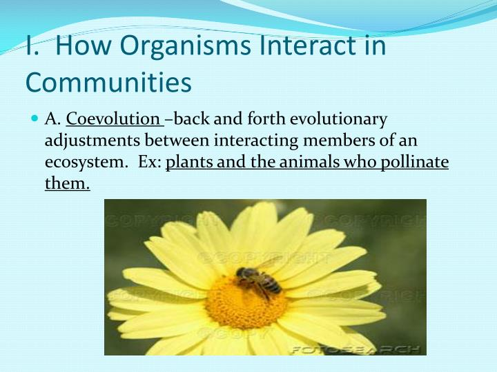 I.  How Organisms Interact in Communities