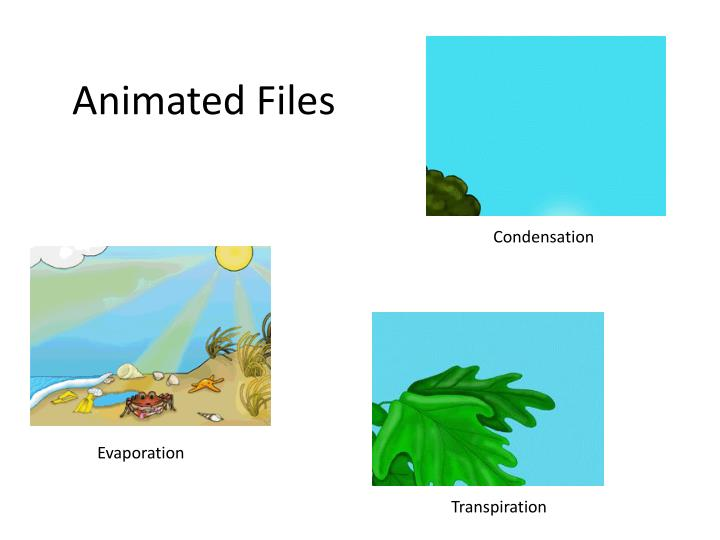 Animated Files