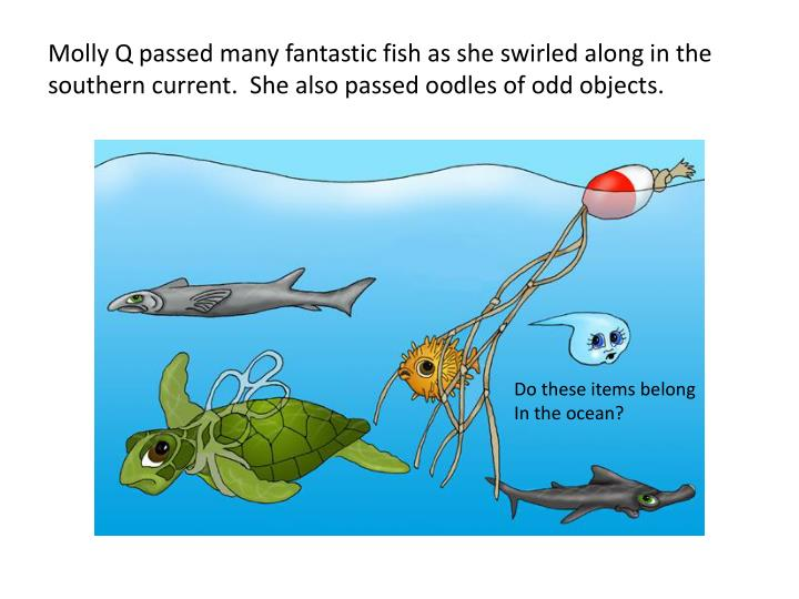 Molly Q passed many fantastic fish as she swirled along in the southern current.  She also passed oodles of odd objects.