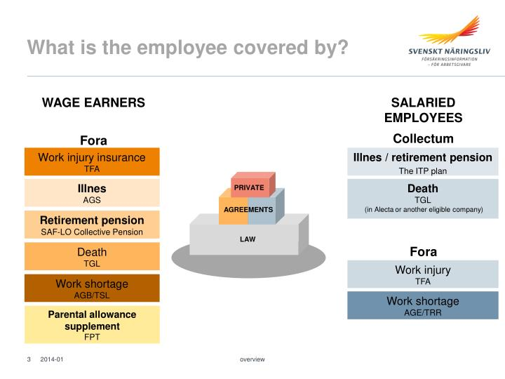 What is the employee covered by