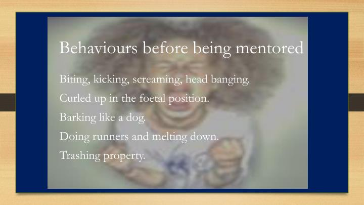 Behaviours before being mentored