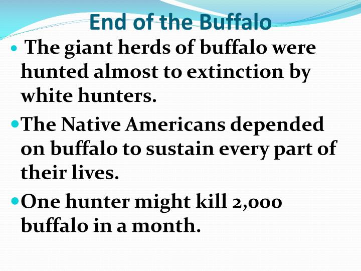 End of the Buffalo