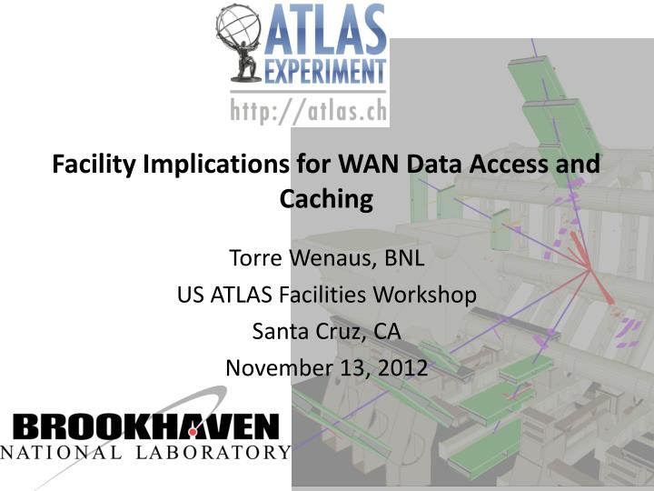 Facility Implications for WAN Data Access and Caching