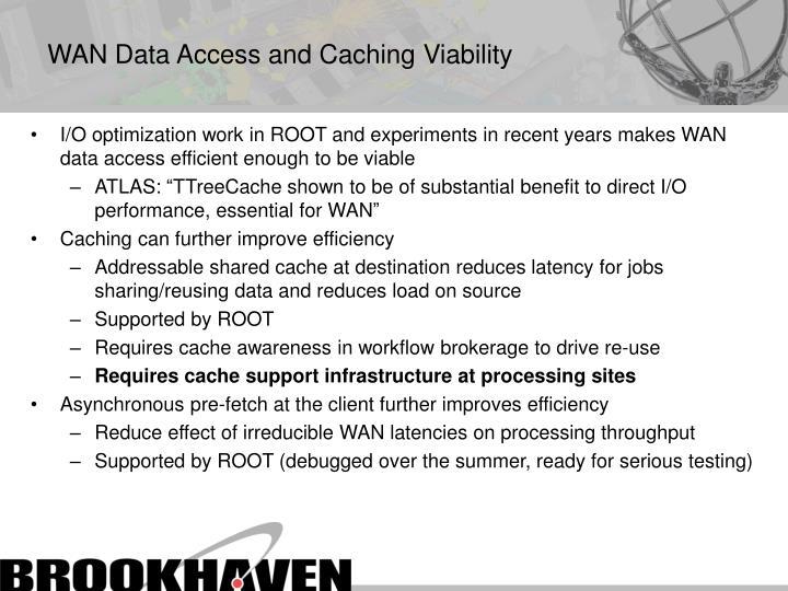 WAN Data Access and