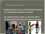 cultural traits simplest level