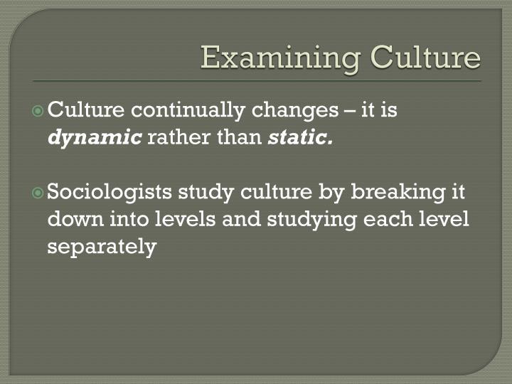 Examining Culture