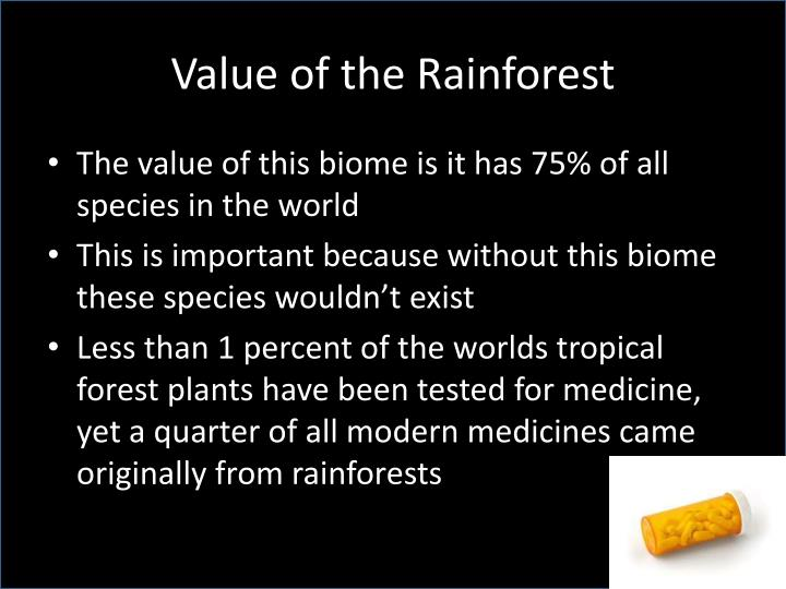 Value of the Rainforest