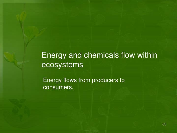 Energy and chemicals flow within ecosystems