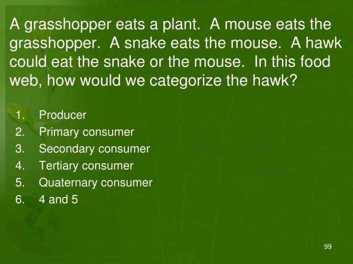 A grasshopper eats a plant.  A mouse eats the grasshopper.  A snake eats the mouse.  A hawk could eat the snake or the mouse.  In this food web, how would we categorize the hawk?