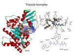triazole komplex