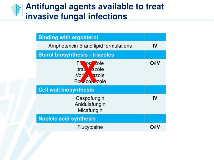 Antifungal agents available to treat